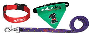 Custom Dog Leashes | Printed Dog Collars