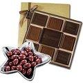 Gourmet and Premium Chocolates