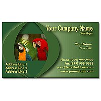 Full Color Economy Business Cards