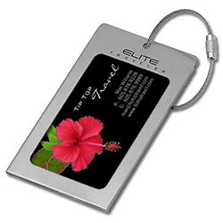 Navigor Series Satin Silver Luggage Tags