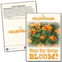 Cosmos 'Bright Lights' Seed Packets