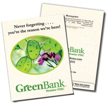 Moneyplant Seed Packets