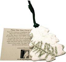 Plantable Pine Tree Ornament with Insert Card