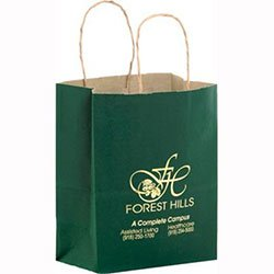 "Paper Shopping Bags, Colored Matte, Foil Stamp, 8"" x 10-1/2"""