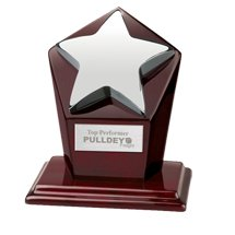 Awards, Star on Octagonal Wood Award