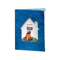 Seed Infused Greeting Cards, House Window, with Envelope