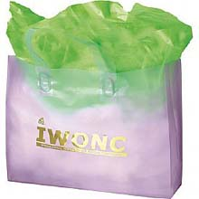 Plastic Shopping Bags, Soft Loop Handle, Foil Stamped, Colored Frosted 17 x 15