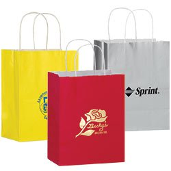 8 x 10-1/2 Colored Gloss Paper Shopping Bags with Foil Stamp Imprint