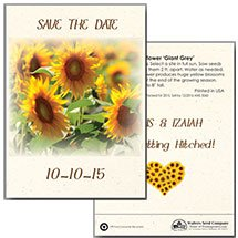 Save the Date Wedding Sunflower Seed Packets