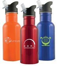 16 oz. Sport Wide Mouth Stainless Bottle