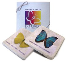 "4"" x 4"" Italian Botticino Tumbled Stone Coasters, Boxed Set of 2"