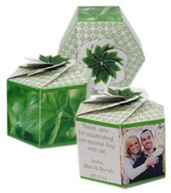 Garden Gems Paper Planters with Basil Seeds
