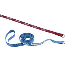 ".75"" x 60"" Smooth Nylon Pet Slip Leashes"
