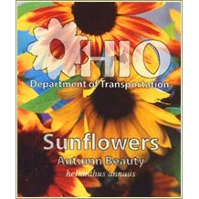 "High Quantity Seed Packets, Full Color Imprint, 2-7/8"" x 3-3/8"""