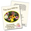 Wildflower '11-Variety Mix' Seed Packets