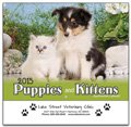 Puppies & Kittens - 13 Month Calendars