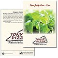 Oregano Seed Packets