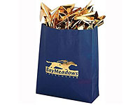 "16"" x 19-1/4"" Colored Matte Paper Bags"
