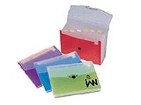 Translucent Plastic Expanding Files