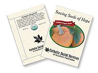 Organic Pumpkin Seed Packets