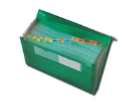 "13"" x 9-1/2"" Plastic Files with Elastic Closure"
