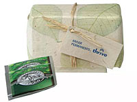 Organic Green Tea Sets with Seed Infused Gift Wrap