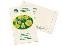 Marigold Postcard Seed Packets