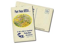 Wildflower Seed Postcards