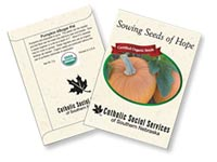 Organic Pumpkin Seed Packets