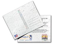 """5"""" x 7"""" Seeded Paper Postcards"""