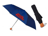 Mini Manual Folding Umbrellas