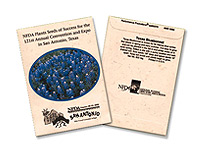 Bluebonnet Seed Packets