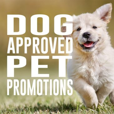 Dog Approved Pet Promotions