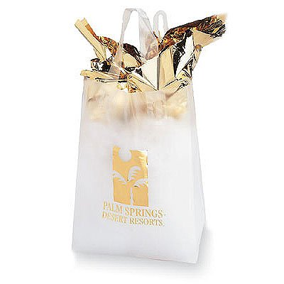 8 x 11 x 4 Frosted Plastic Shopping Bags, Foil Stamped