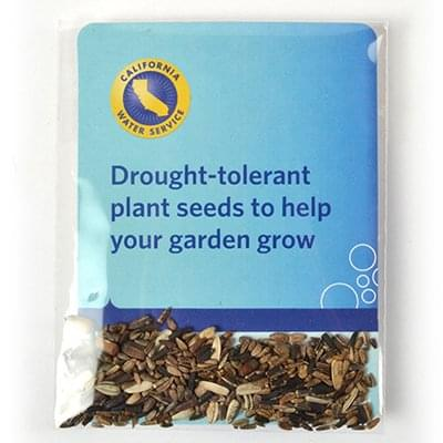 Clear Compostable Cellophane Sunflower Seed Packets