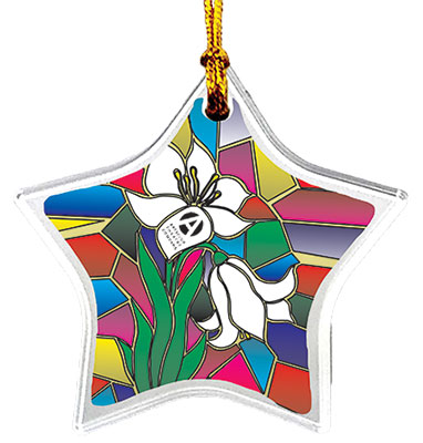 Acrylic Sun Catcher Star Ornaments