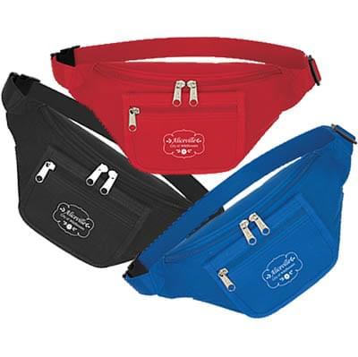 Fanny Packs with Organizer
