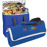 Arctic Zone 30 Can Foldable Freezer Totes