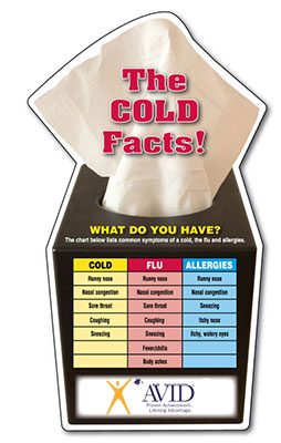 Cold and Flu Facts Magnets