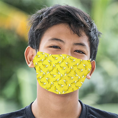 Youth/Small Double Ply Structured Face Masks