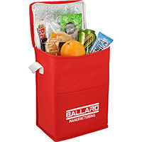Budget Tall Non-Woven 12 Can Lunch Coolers