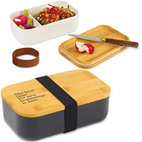 Satsuma Bento Lunch Boxes