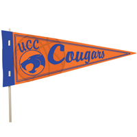 16 x 7 Full Color Cardstock Pennants