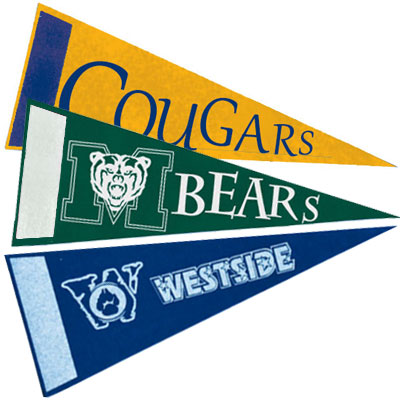 10 x 4 Econo Sports Pennants with Printed Accent Strip