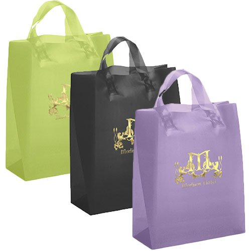 13 x 17 x 6 Frosted Brite Shopping Bags, Foil Stamped
