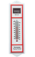 """One Hundred"" Plastic Outdoor Thermometers"