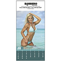 Swimsuit Pin-up Calendars