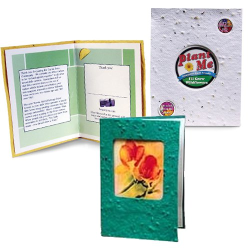 4 x 5.5 Plantable Window Cards with Envelopes