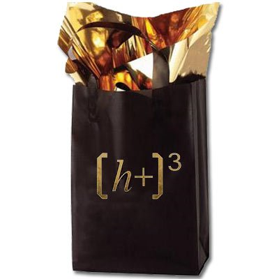 8 x 11 x 4 Color Frosted Plastic Shopping Bag, Foil Stamped