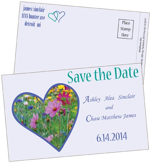 Digital Save the Date Butterfly Mix Postcard Seed Packets